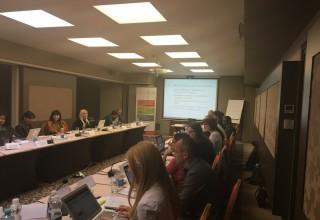 Steering Committee Meeting, Nov 2017